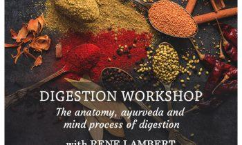 Digestion workshop