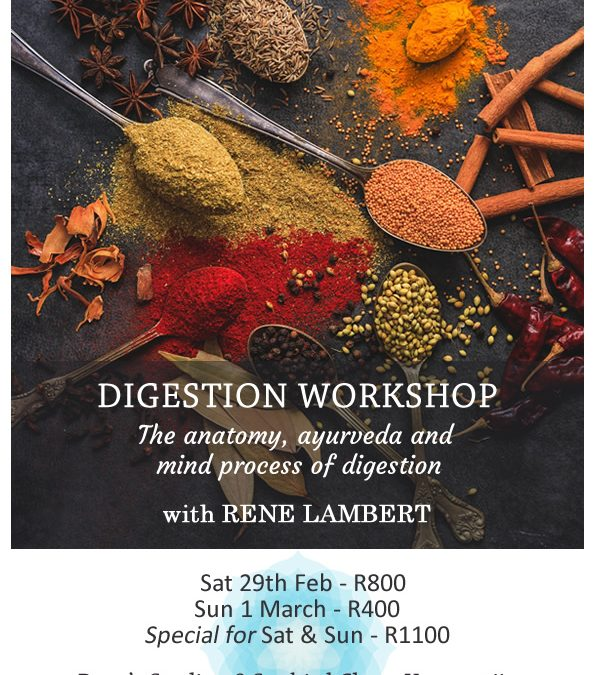 Digestion workshop